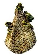 Frog on Snake Fruit