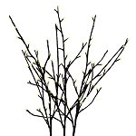 Black Glitter Lighted Branches